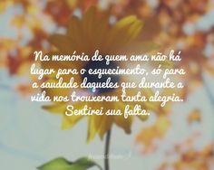 Na memória de quem ama não há lugar para o esquecimento, só para a saudade daqueles que durante a vida nos trouxeram tanta alegria. Sentirei sua falta.