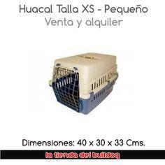 Cali, Facebook, Pereira, Store, Dogs, Gatos