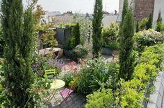 Toit terrasse verdoyant à Paris