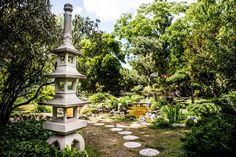Botanikai ritkaságokat és több évszázadra visszanyúló tradíciót találunk a Varga Márton Kertészeti és Földmérési Szakgimnázium kertjében. Budapest, Hungary, Beautiful Gardens, Weed, Fountain, Places To Go, Sidewalk, Patio, Outdoor Decor