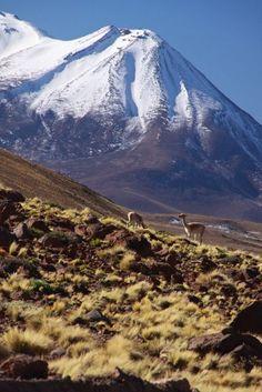 Traveling Northern Chile, Chap2: Atacama desert