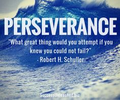 Persistence and perseverance