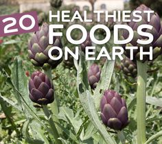 20 Healthiest Foods on Earth- for your health  wellness.