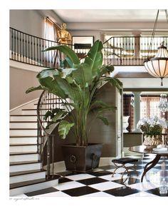 plant as focal pointpoint - kardashian jenner home - california - jeff andrews