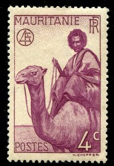 Stamp: Man on Dromedary (Camelus dromedarius) (Mauritania) (Type 1938 without RF) Mi:MR 126 Old Stamps, Vintage Stamps, French West Africa, Postage Stamp Art, France, Fauna, Stamp Collecting, My Stamp, Mauritius