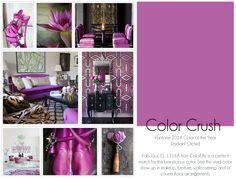 Color Crush | Radiant Orchid #Pantone #coloroftheyear #2014