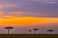 """Mara North Sunrise - A new day begins on the plains in  Mara North Conservancy dotted with acacia trees that scream Africa. Why not experience the magic of East Africa by joining me on an upcoming  <a href=""""http://www.southcapeimages.com/Masai_Mara.html"""">Maasai Mara Photo Safari</a>  in 2016."""