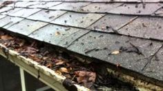 Gutter Guard Review - Leaf Relief or any Aluminum perforated type