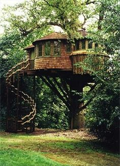 Tree house. gonna have one! add books (ok a lot of books), a mini fire place and a comfy couch... you get the perfect getaway