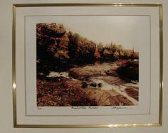 $28.99  Nature Signed Limited Edition Photograph Marsh'S Falls Muskoka BY D Lawrence | eBay #photography #muskoka #falls #nature