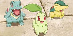 Totodile <3 Cyndaquil <3 Chikorita <3 #Pokemon <3