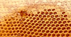 What's the Benefits of Honey for Your Health