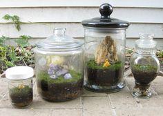 DIY terrarium instructions.