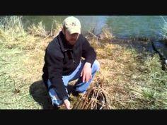 Primitive Basket Fish Trap