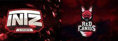 Red Canids vs Intz Esports - League of Legends - Circuito Brasileiro