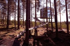 The mirror cube (above) is just one of six individually designed treehouses at this family favourite Swedish hotel