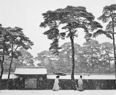 View Meiji temple, Tokyo, Japan by Werner Bischof on artnet. Browse more artworks Werner Bischof from Magnum Photos. Magnum Photos, Istanbul, Viviane Sassen, Art Beat, Gelatin Silver Print, Photographer Portfolio, Lausanne, Great Photographers, Robert Capa