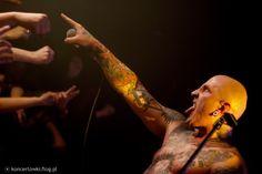 Punk, Concert, Concerts, Festivals