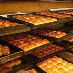 Bakery Products: Consultancy for Establishing Manufacturing Projects India is the 2nd largest wheat producing country in the world next only to China. The present production of wheat in India is about 72 million tonnes indicating 6-fold increase in the three decade due to onset of green revolution.  For more info please visit : http://www.articlesbase.com/industrial-articles/bakery-products-consultancy-for-establishing-industrial-projects-6739906.html