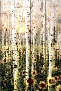 Daisy Forest Reclaimed White Barn Siding Wood Art By Parvez Taj Forest Painting, Forest Art, Painting On Wood, Painting Prints, Art Prints, Paintings, Barn Siding, Wood Siding, White Barn