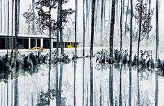 Paul Davies - Snow trees, lake and house