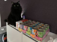 Fluffy void is pleased with today's delivery All Black Cat, Black Cats, Black Cat Aesthetic, Cool Cats, Miraculous, Cats And Kittens, How To Find Out, Create Yourself, Cute Animals