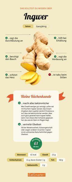 Alles, was du über Ingwer wissen solltest | eatsmarter.de #ingwer #ernährung #infografik