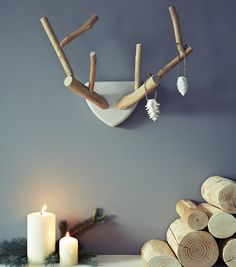 Pour @Véronique Lacharité... tree branch taxidermy #diy