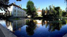 Bakonyi fesztiválok 2019. Fesztiválok a Bakony és Balaton térségében - Programturizmus  #magyarország #fesztivál #vásár #ünnep #kultúra #gasztronómia