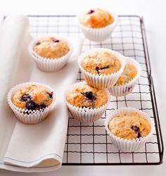 Muffins com chocolate ou frutos secos / Suspiros / Bolo de Baunilha / Massa quebrada