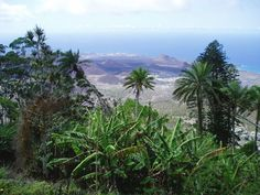 Ascension Island Ascension Island, Island Map, Garden Cottage, Atlantic Ocean, Tour Guide, Geography, The Good Place, Islands, Tourism