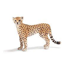Schleich Cheetah Female by SCHLEICH NORTH AMERICA. $12.77. Primary Habitat: Grassland. Fun Fact: Faster than most sports cars, the cheetah can reach speeds of almost seventy miles per hour from a dead stop in three seconds.. Zoological Name: Acinonyx jubatus. 1.4 in L x 4 in W x 2.6 in H. Conservation Status: Vulnerable (VU). Cheetahs are fast felines spotted with black. Active during the day, cheetahs reside in the same areas as the nighttime hunters, lions and...