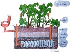 Magia de quintal: {Lar ecológico 1} Fossa ecológica para tratamento de águas negras