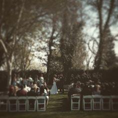 Vintage Gardens | modesto | garden wedding | wedding | modesto, ca | California | redwood cafe