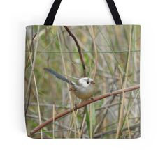 Fairywren white head by BirdBags Small