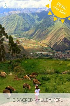 10 Things do with kids in The Sacred Valley, Peru
