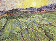 Enclosed Field with Rising Sun, 1889. Vincent van Gogh