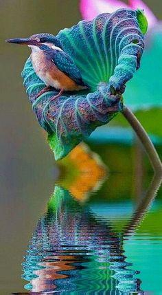 """@almansy2233: @Teagan Suminski Suminski Suminski Feuk @BendahanL @Globe_Pics @ruhsar54 china pic.twitter.com/EkzQEkZOmZ""Love this! Thankyou Kamel! X"