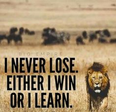 I never lose. Either I win or I learn.- I never lose. Either I win or I learn. I never lose. Either I win or I learn. Inspiring Quotes, Great Quotes, Quotes To Live By, Unique Quotes, Inspirational Videos, Motivacional Quotes, Quotable Quotes, Qoutes, Daily Quotes