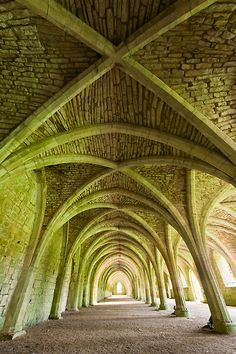 Fountains Abbey (National Trust) by Chris Tarling
