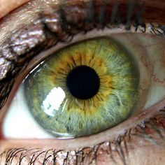 Green eye with central heterochromia. Yellow.