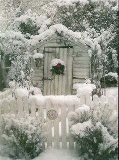 The outhouse in winter - Brrrrr! a rapid dash and a very quick sh.t!!!
