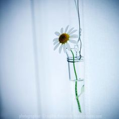 This made us feel good... Sophie Thouvenin #photography