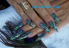 Peacock Dynasty Nails Aug 2012 These have very thin peacock feathers inlaid into the acrylic. They eye of the peacock feather is made of card stock and painted by me . I used a stamping plate for the black flowers .