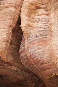 A Close View of the Layered Sandstone Rocks at Petra, Jordan by Taylor S. Kennedy