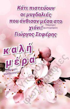 Greek Quotes, True Words, Cuddling, Quotes, True Quotes