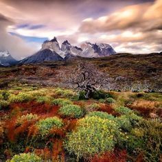 Fantastically bleak yet colourful Patagonian landscape shot captured by Keith Ladzinski of 3 Strings Productions. Image via Black Diamond Equipment Ltd