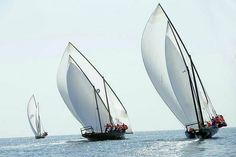 تابعوا 80 فريقاً يتنافسون ويظهرون مهاراتهم البحرية في سباق زركوه للمحامل الشراعية فئة 60 قدم #في_أبوظبي  التاريخ: اليوم / 1:00 ظهراً المكان:كاسر أمواج كورنيش أبوظبي #فعاليات #أنشطة #قوارب #إبحار #سباق #زركوه #سباق_بحري  Watch 80 competing boats for some spectacular sailing action at 'Zirku 60ft Dhow Sailing Race' #InAbuDhabi!  Date: Today / 1:00pm Location: Abu Dhabi Corniche Breakwater #Events #Activities #Boats #Sailing #Racing #Zirku #DhowSailingRace #DhowSailing