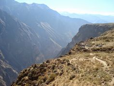 El vuelo del Cóndor en el Valle del Colca, en el Perú http://el-mundo-de-rocio.blogspot.com.es/2014/10/el-vuelo-del-condor-en-el-valle-del.html