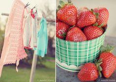 copyright mandylynne  strawberries